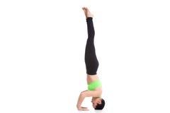 Asana di yoga di sirsasana di Salamba Immagini Stock
