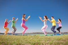 Asana di yoga di pratica delle coppie dell'albero sulla riva del lago Concetto di yoga Fotografie Stock Libere da Diritti