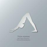 Asanas di yoga Adho Mukha Svanasana Posa orientata verso il basso del cane Fotografia Stock