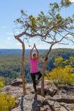 Asanas fêmeas da ioga em opiniões de região selvagem de montanha imagens de stock