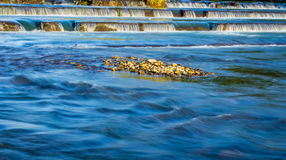 Asano River Stockbild