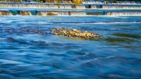 Asano rzeka Obraz Stock