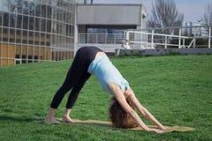 Asans doeing di yoga della giovane bella donna di misura sull'erba verde con la stuoia di yoga Immagini Stock