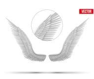 Asas abertas do anjo do branco Vetor Fotos de Stock
