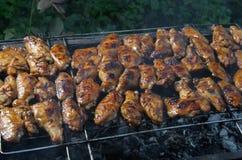 Asas de galinha grelhadas na grelha da grade Fotografia de Stock