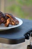 Asas de galinha na grade Foto de Stock