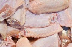 Asas de galinha refrigeradas frescas imagem de stock
