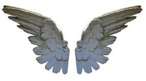 Asas de pedra do anjo Imagens de Stock