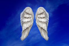 Asas do anjo Fotografia de Stock Royalty Free
