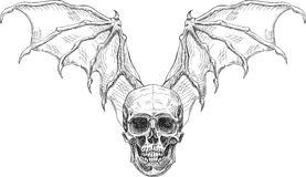 Asas do crânio e do diabo Foto de Stock Royalty Free