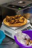 Asas fritadas com molho na bandeja Fotos de Stock Royalty Free
