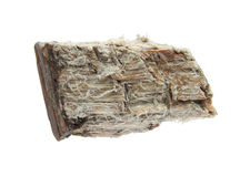 Asbestos. Mineral sample isolated on white Royalty Free Stock Photos
