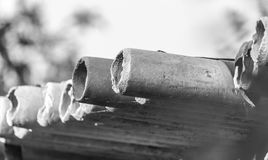 Asbestos cement pipes. In the park in nature Stock Photography