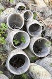 Asbestrohre verlassen Stockfoto