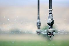 Ascendente cercano de la irrigación Fotografía de archivo