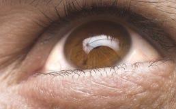 Ascendente cercano del ojo Fotografía de archivo