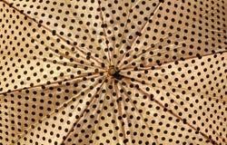 Ascendente cercano del paraguas Fotos de archivo