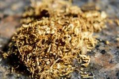 Ascendente cercano del tabaco Imagen de archivo