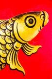 Ascendente próximo do peixe dourado Imagens de Stock Royalty Free