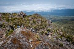 Ascendiendo hacia Shira Campsite, Kilimanjaro Imagen de archivo libre de regalías