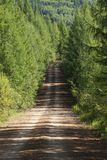 Ascending dirt road Royalty Free Stock Photography