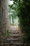 Ascending path. Between stoned wall and plants Royalty Free Stock Photo