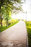 Ascending path in a park. In the spring time Stock Photography