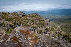 Ascending towards Shira Campsite, Kilimanjaro Royalty Free Stock Image