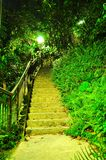 Ascending walkway at Labrador park. An ascending lighted walkway surrounded by greenery at Labrador park, Singapore, by night Stock Photography