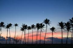 Ascensão de Kapaa Sun Foto de Stock Royalty Free