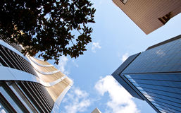 Ascensão elevada de Tokyo Japão fotografia de stock royalty free