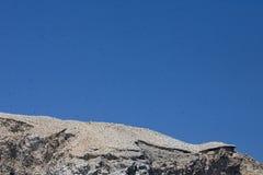 Ascensione dell'isola di Boatswaindbird immagine stock