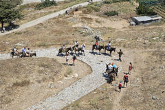 The ascent to the Acropolis on the backs of donkeys. Lindos stock photo