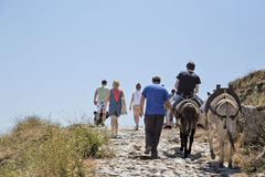 The ascent to the Acropolis on the backs of donkeys. Lindos royalty free stock photography