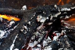 Asche eines Waldbrands Lizenzfreie Stockfotos