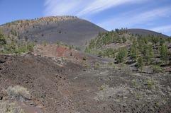 Asche-Kegel des Sonnenuntergang-Kraters Stockfotos