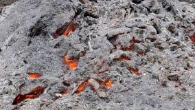 Asche und Kohlen von einem starken Feuer stock video footage