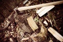 Ascia di intaglio del legno attaccata in un ceppo Immagine Stock Libera da Diritti