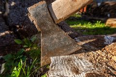 Ascia pronta per il taglio del legname fotografia stock libera da diritti