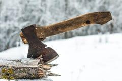 Ascia in un albero nell'inverno Immagine Stock