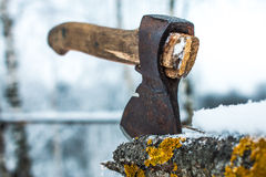 Ascia in un albero nell'inverno Immagine Stock Libera da Diritti