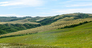 Asciano (Siena, Tuscany) Royalty Free Stock Photography