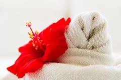 Asciugamano bianco con un fiore su fondo bianco Fotografie Stock