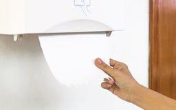 Asciugamano della carta velina Fotografia Stock