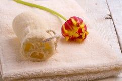Asciugamano ed articoli da toeletta Fotografie Stock