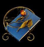 Asciugato è aumentato sul libro e sul basamento di libro Fotografia Stock Libera da Diritti
