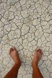 Asciughi e terra incrinata Immagini Stock Libere da Diritti