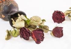 Asciughi i fiori rosa Immagini Stock