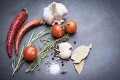 Asciughi i peperoncini, i pomodori, l'aglio ed il condimento roventi Fotografia Stock Libera da Diritti