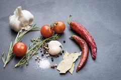 Asciughi i peperoncini, i pomodori, l'aglio ed il condimento roventi Fotografia Stock